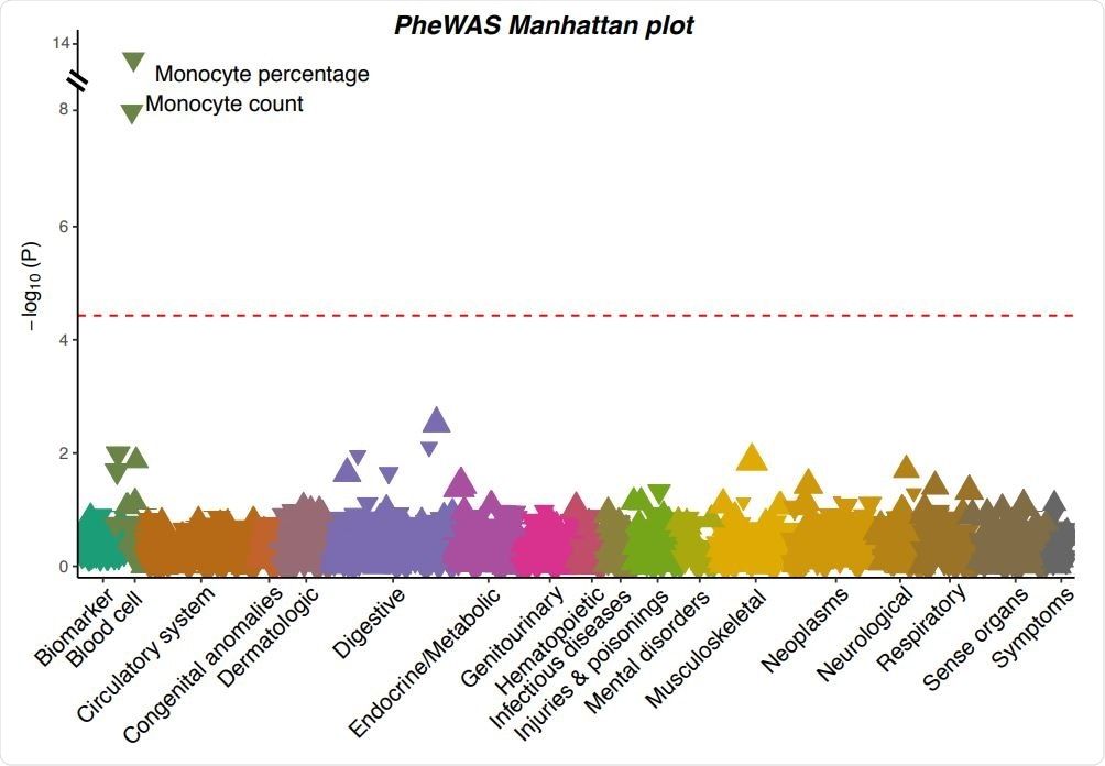 A Manhattan plot showing the associations between the severe COVID-19 risk variant and 923 phenotypes in UK Biobank. Each triangle represents one phenotype. Triangles pointing up indicate increasing effects of the COVID-19 risk allele on the phenotypes, while those pointing down indicate decreasing effects. The size of the triangle is proportional to the effect size. The significance threshold with Bonferroni correction (p < 0.05 / 923 = 5.42×10-5 ) is represented by the red dashed line.