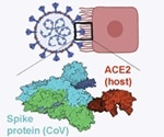 AI used to define the cytokine storm implicated in fatal COVID-19