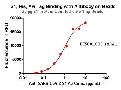 S1,His,Avi Tag Binding with Antibody on beads.
