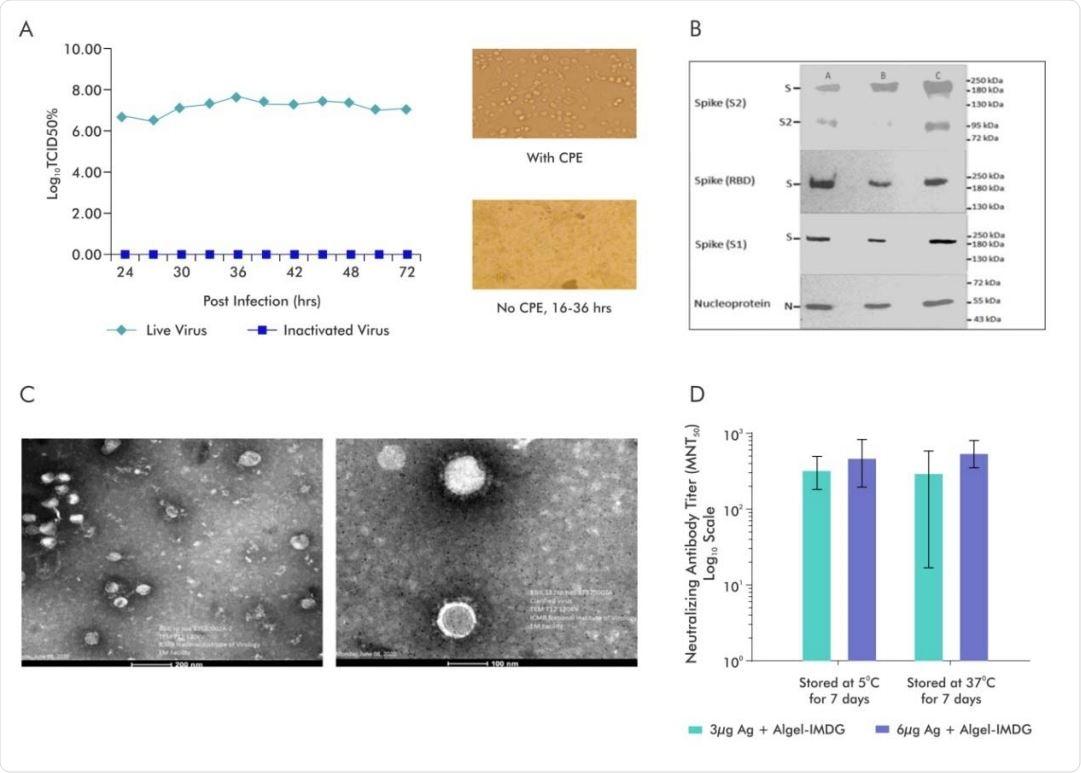 Caratterizzazione di SARS-CoV-2 inattivato e valutazione della stabilità delle formulazioni del vaccino BBV152.