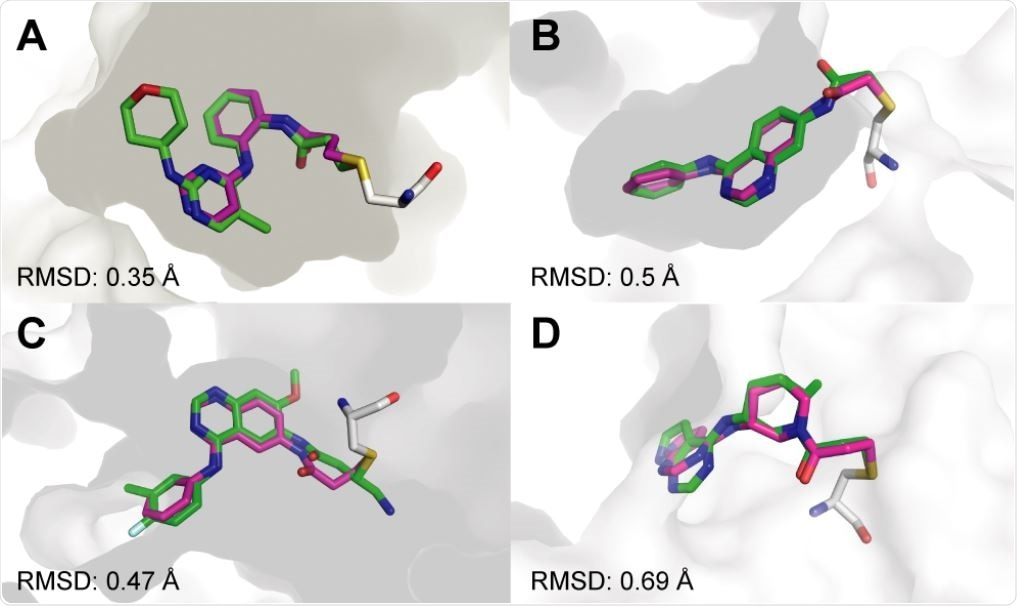 Covalentizer successfully recapitulates known covalent kinase inhibitors. Examples of covalent kinase inhibitors (green) for which covalentizer was able to find a substructure match (magenta) under the 1.5 Å threshold. A. ERK2, PDB: 4ZZO. B. EphB3, PDB: 5L6P. C. EGFR (T790M), PDB: 4I24. D. JAK3, PDB: 5TOZ. The electrophiles span acrylamides (A,D), a substituted acrylamide (C) and chloroacetamide (B).