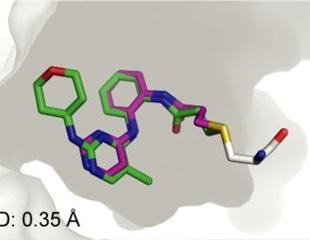 Automated computational protocol identifies potential SARS-CoV-2 MPro inhibitor
