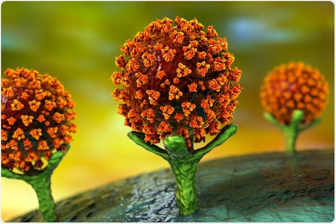 Vírus SarsCOV2 que liga a ACE-2