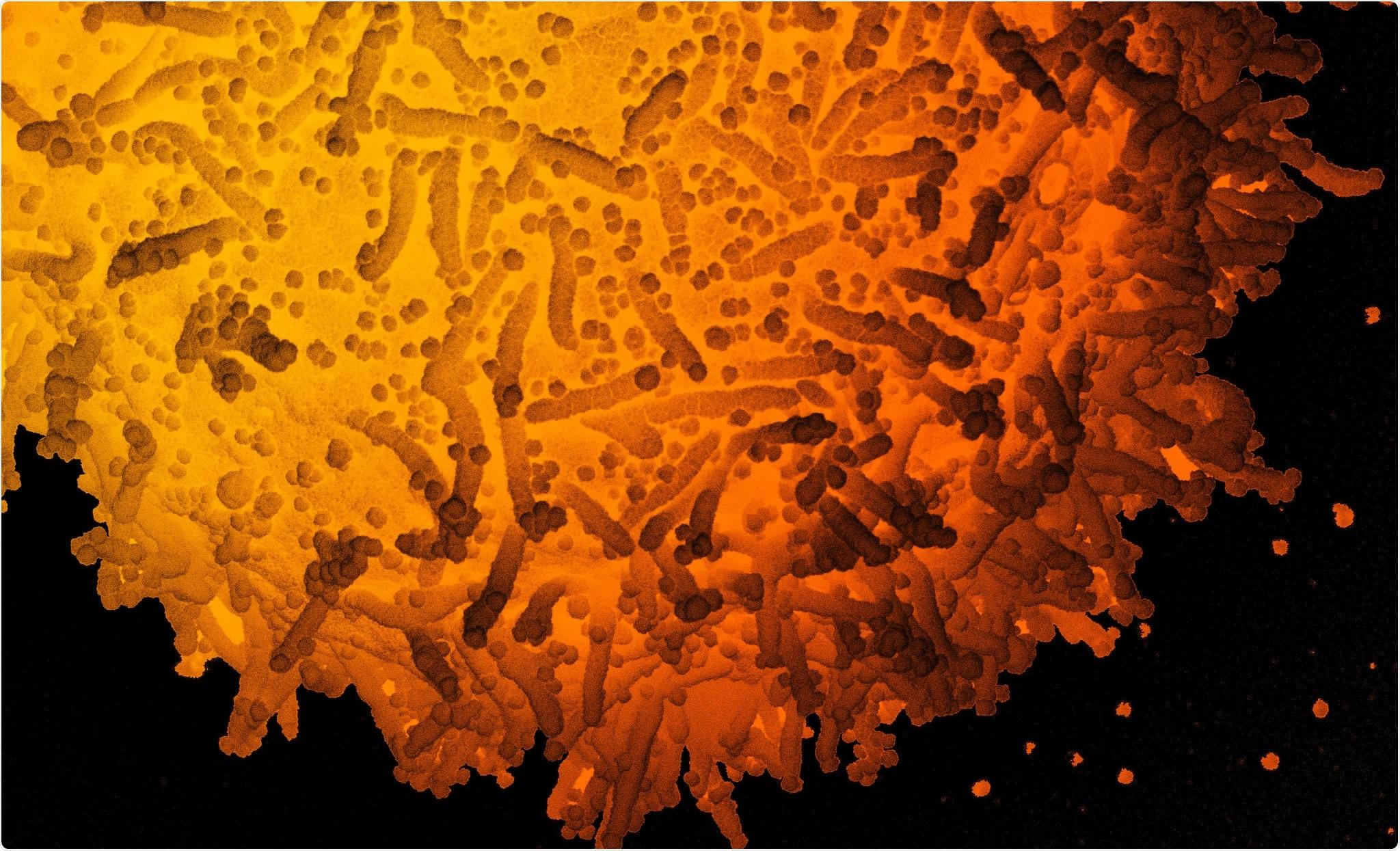 Estudo: Traço detalhado das mutações ao domínio SARS-CoV-2 receptor-obrigatório que afectam o reconhecimento por anticorpos humanos polyclonal do soro. Crédito de imagem: NIAID