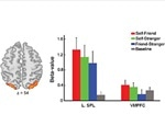 Research pinpoints brain region responsible for self-bias in working memory