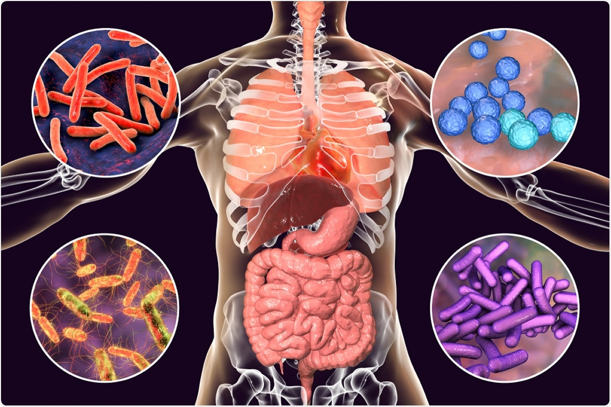 Study: The intestinal and oral microbiomes are robust predictors of covid-19 severity the main predictor of covid-19-related fatality. Image Credit: Kateryna Kon / Shutterstock