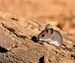 Study shows several peridomestic mammal species are potential spreaders of SARS-CoV-2