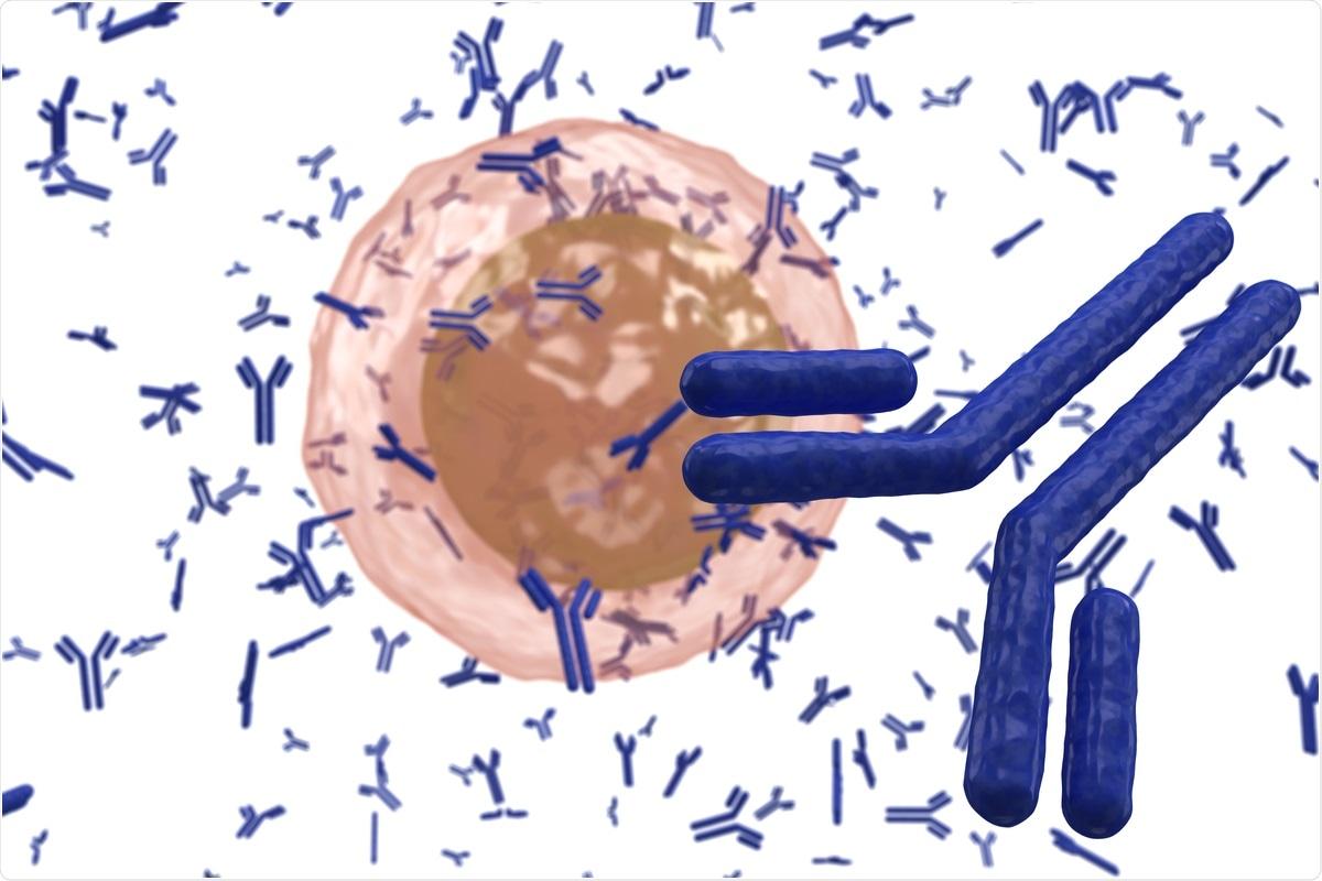 Study: Evolution of antibody immunity to SARS-CoV-2. Image Credit:  extender_01 / Shutterstock