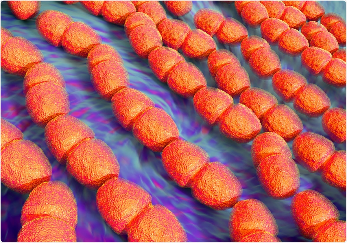 Enterococcus faecalis bacteria known as Streptococcus faecalis. These bacteria are rounded or oval-shaped cocci, seen here typically forming chains of cells. Image Credit: Shutterstock