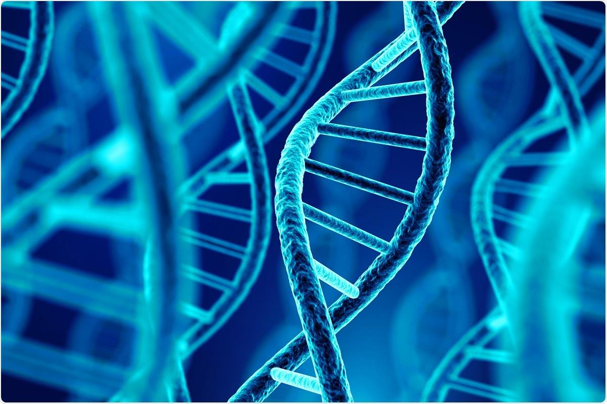 Estudio: las nuevas definiciones del fenotipo de COVID-19 revelan patrones fenotípicamente distintos de asociación genética y efectos protectores.  Haber de imagen: Sashkin / Shutterstock