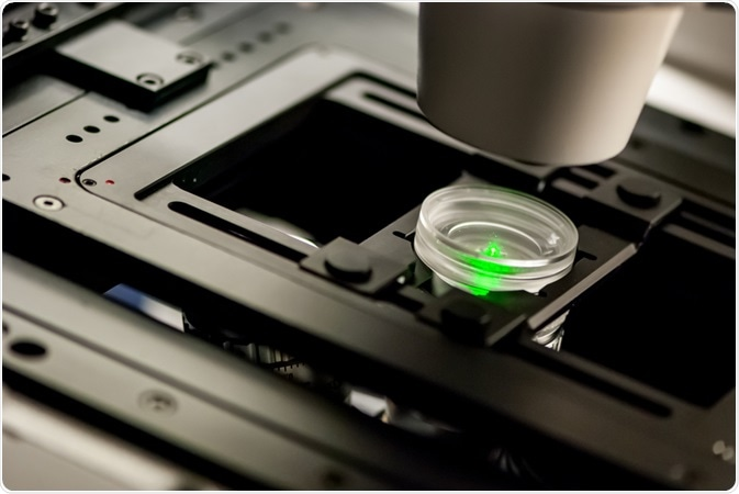 What is Confocal Fluorescence Microscopy?