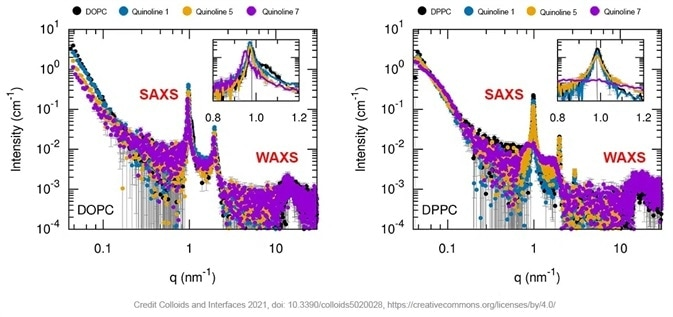 SAXS curves of empty and quinoline loaded phospholipid containing multilamellar vesicles (black curve is empty liposomes, orange, blue and purple curves are for different quinolines formulations). Insert is a zoom on the scattering peaks.
