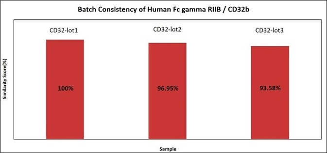 Batch consistency of Human Fc gamma RIIB / CD32b (Cat. No. CDB-H5228). The consistency of different batches is more than 90%.