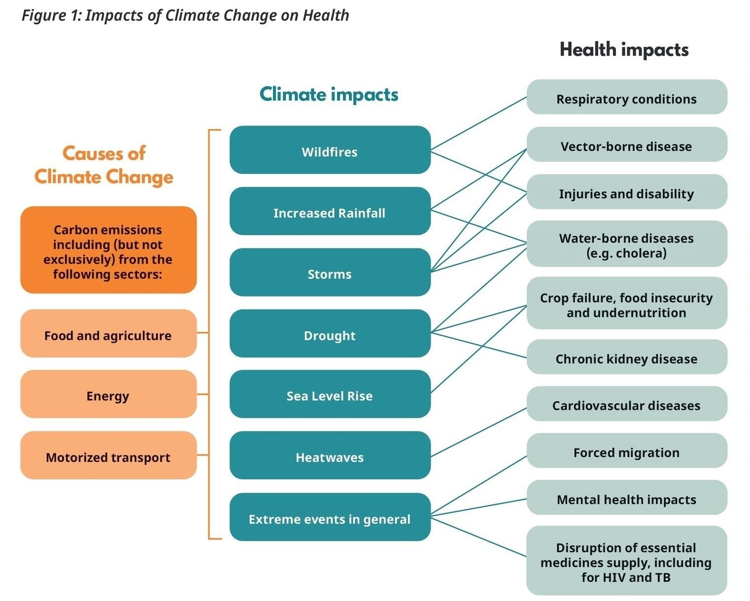 New report evaluates the impact of climate change on health