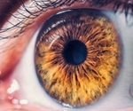 New study finds SARS-CoV-2 causes retinal infection