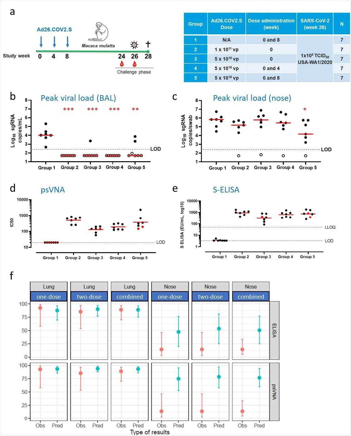 Durable protection against SARS-CoV-2 in the lower airways after vaccination with Ad26.COV2.S is predicted by binding and neutralizing antibody levels.