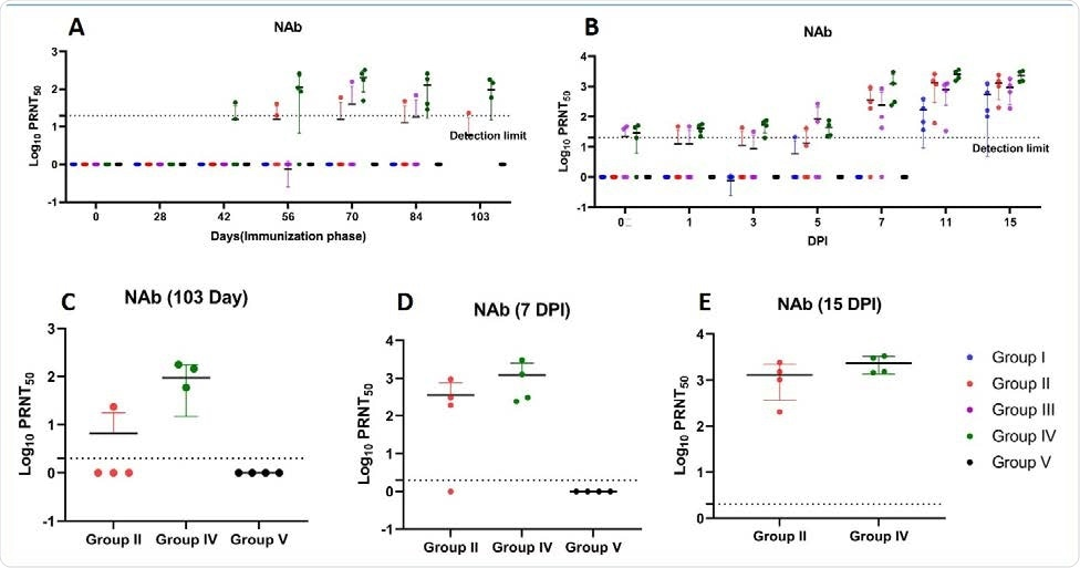 Neutralizing antibody response in rhesus macaques (A) NAb titers in animals of group I, II, III, IV and V from 0 to 103 days of immunization period (B) NAb titers in animals of group I, II, III, IV and V at 0, 1, 3, 5 7, 11 and 15 DPI (C) Peak NAb titers at day 103 of immunization phase of group II, IV and V (D) Peak NAb titers at 7 DPI of groups II, IV and V (E) Peak NAb titers at 15 DPI of group II and IV. The statistical significance was assessed using the Kruskal-wallis test followed by the two tailed Mann-Whitney test between two groups; p-values of less than 0.05 were considered to be statistically significant. The dotted line on the figures indicates the limit of detection the assay. Data are presented as mean values +/- standard deviation (SD). Statistical comparison was done by comparing the vaccinated group with the placebo group as control. Group I = blue, group II = orange, group III = purple, group IV = green and group V = black, number of animals = 4 animals in each group.
