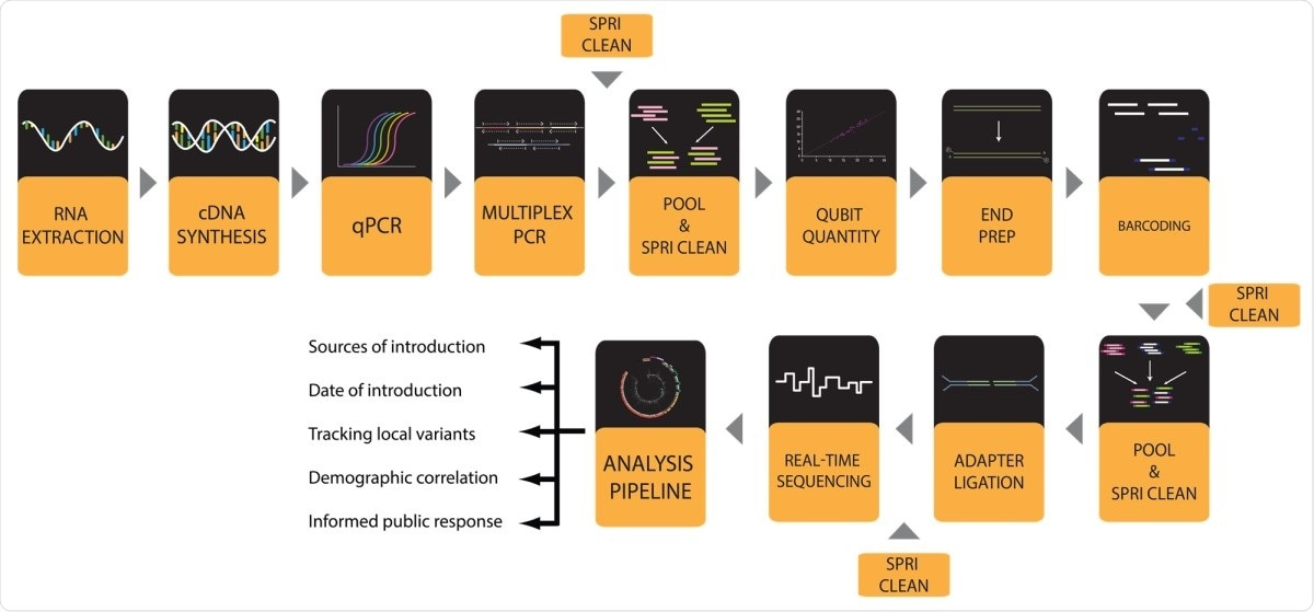 Workflow for SARS-CoV-2 viral genome sequencing with a MinION instrument.