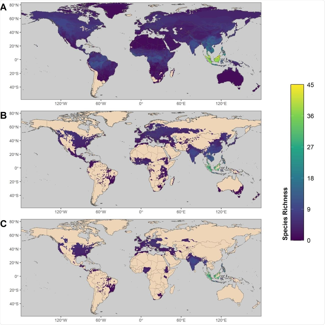Maps showing the global distribution of species with predicted capacity to transmit SARS-CoV452 2. (A) depicts global species richness of the top 10 percent of model-predicted zoonotic capacity. Ranges of this subset of species were filtered to those associated with human-dominated or human-altered habitats (B), and further filtered to show the subset of species that overlaps with areas of high human SARS-CoV-2 positive case counts (over 100,000 cumulative cases as of 15 February 2021) (C)