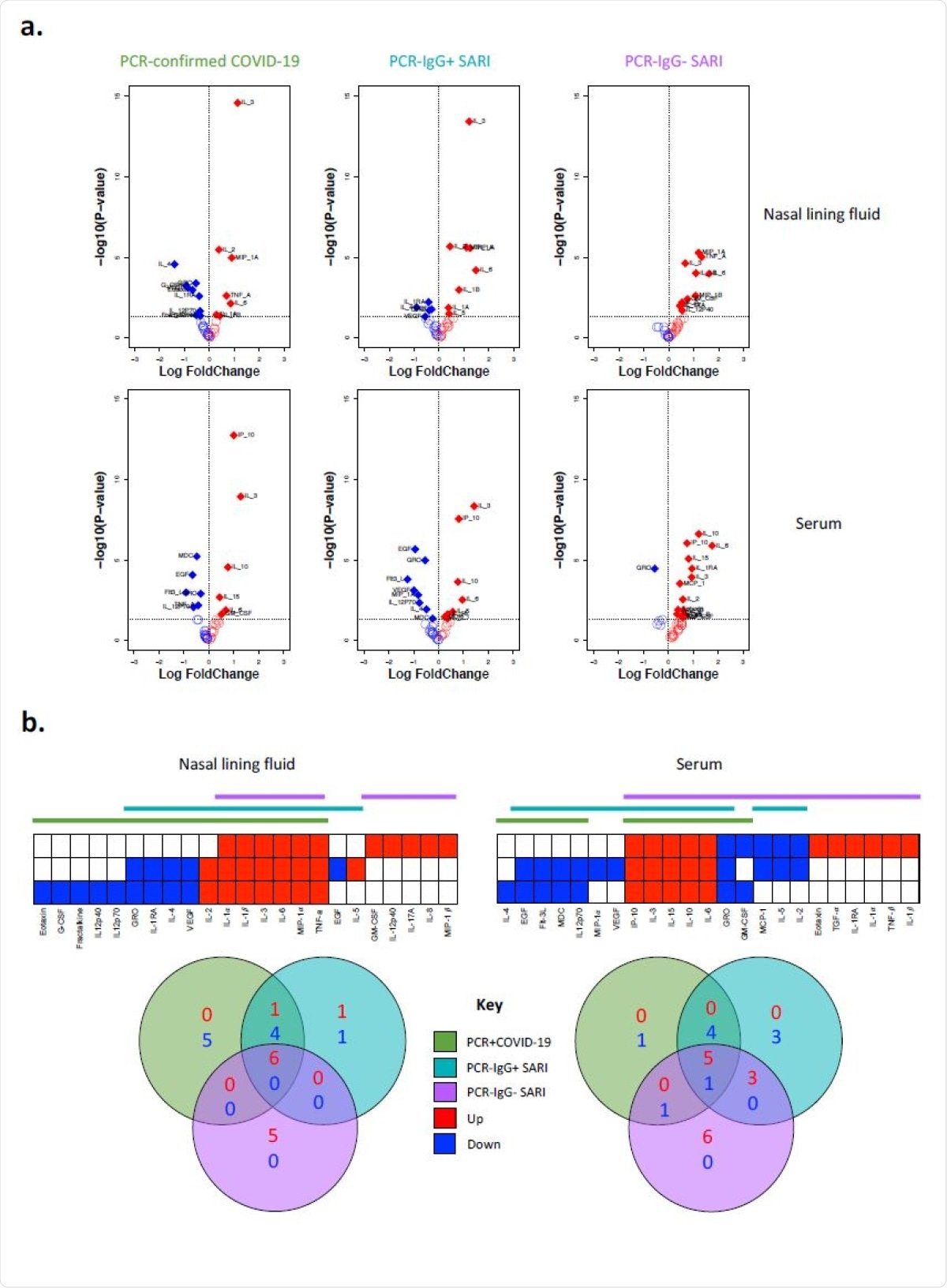 Cytokine concentrations in nasal lining fluid and serum. a) Volcano plots showing differential cytokine concentrations in nasal lining fluid and serum of PCR-confirmed COVID-19, PCR- /IgG+ SARI and PCR-/IgG- SARI patients compared to health controls. The horizontal dotted line represents a cut-off for statistical significance, while the vertical dotted line represents a cut-off point for determining whether the levels of the cytokines were higher (right, red) or lower (left, blue) compared to healthy controls. b) Venn diagrams showing similarities in cytokine concentrations among the PCR-confirmed COVID-19 (green), PCR-/IgG+ SARI (turquoise) and PCR- /IgG- SARI (purple) patients in nasal lining fluid and serum relative to healthy controls. Numbers in Venn diagrams represent the number of cytokines that were either higher (red) or lower (blue) than healthy controls common among the study groups. Data were analysed using empirical Bayes moderated t-tests (Healthy controls,