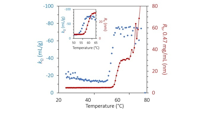 Diffusion interaction parameter (blue diamonds, left axis) and radius (red circles and solid line, right inverted axis) at lowest concentration as a function of temperature at pH 8.5. Inset: same, highlighting the transition region.