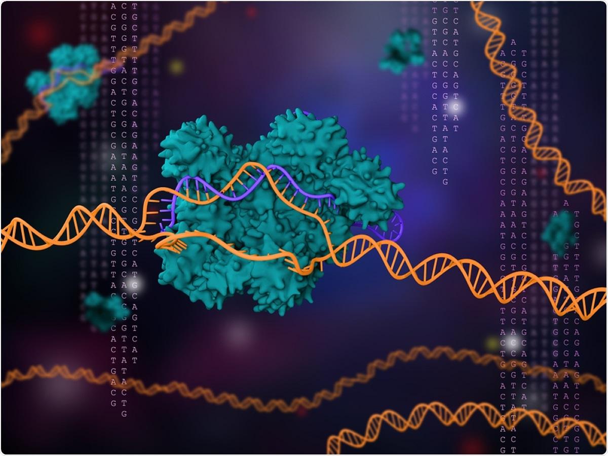 Study: A genome-wide CRISPR screen identifies interactors of the autophagy pathway as conserved coronavirus targets. Image Credit: Meletios Verras / Shutterstock