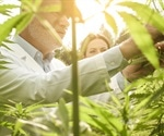 An Analytical and Legal Spotlight on Cannabis