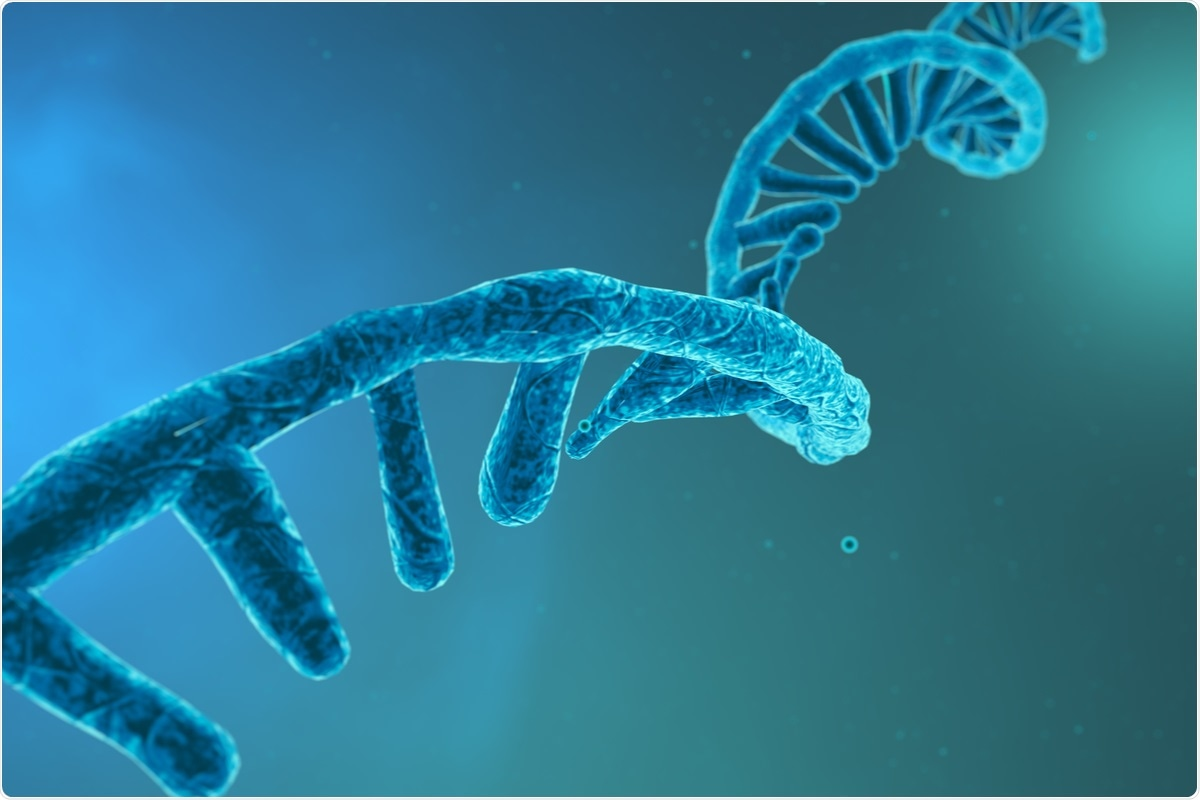 Study: Dual RNA-Seq analysis of SARS-CoV-2 correlates specific human transcriptional response pathways directly to viral expression. Image Credit: CROCOTHERY / Shutterstock