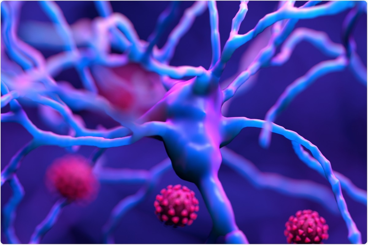 Study: SARS-CoV-2 causes brain inflammation and induces Lewy body formation in macaques. Image Credit: Design_Cells / Shutterstock