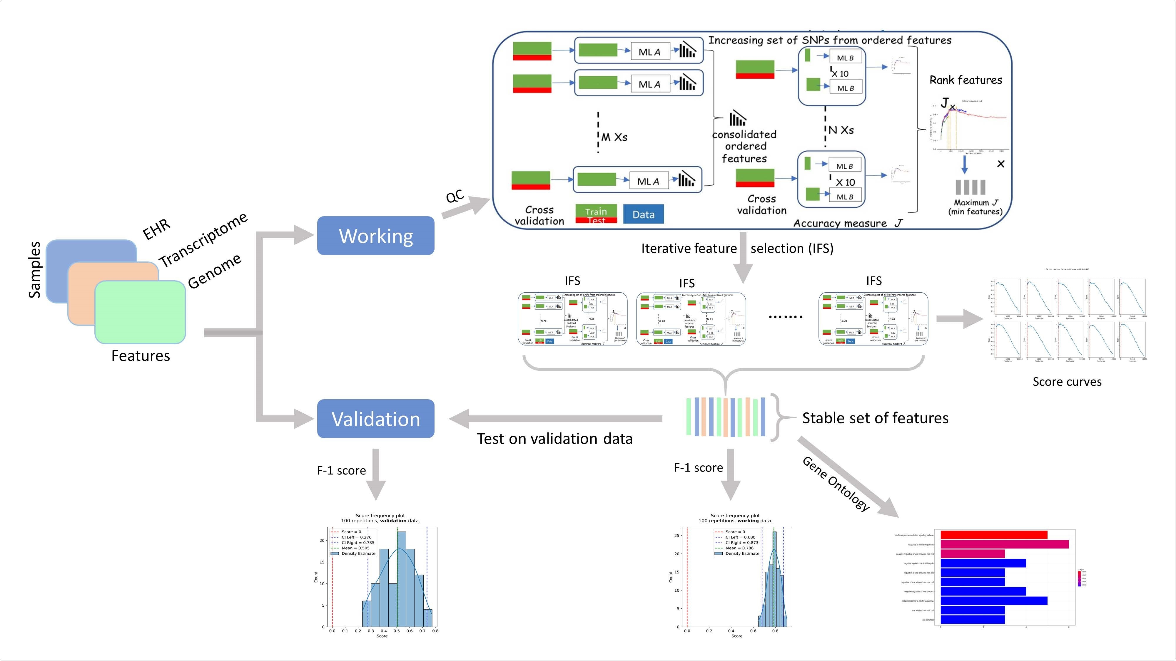 Components of RubricOE, as ensemble ML pipeline extracting stable features from multi-omics data.