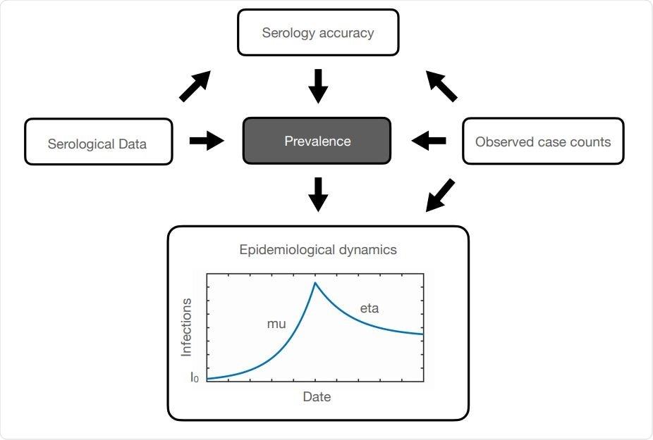 Chapeie o diagrama (Koller e Friedman, 2009) indicando o gráfico acíclico que governa os relacionamentos entre variáveis em nosso modelo. As setas indicam dependências condicionais, de acordo com equações na secção dos métodos. Para a dinâmica epidemiológica, nós supor que o número de casos activos aumenta exponencial com µ da taxa e diminui então de acordo com a deterioração exponencial com η da taxa depois da introdução de medidas da NPI. I0 é o número de casos iniciais entre a população. Este diagrama esquemático representa a predominância do anticorpo durante uma elevação e então uma queda da pandemia sobre uma fase monofásica. (Por exemplo, fase 1 da pandemia dentro B.C. desde fim de janeiro até o fim de maio.)