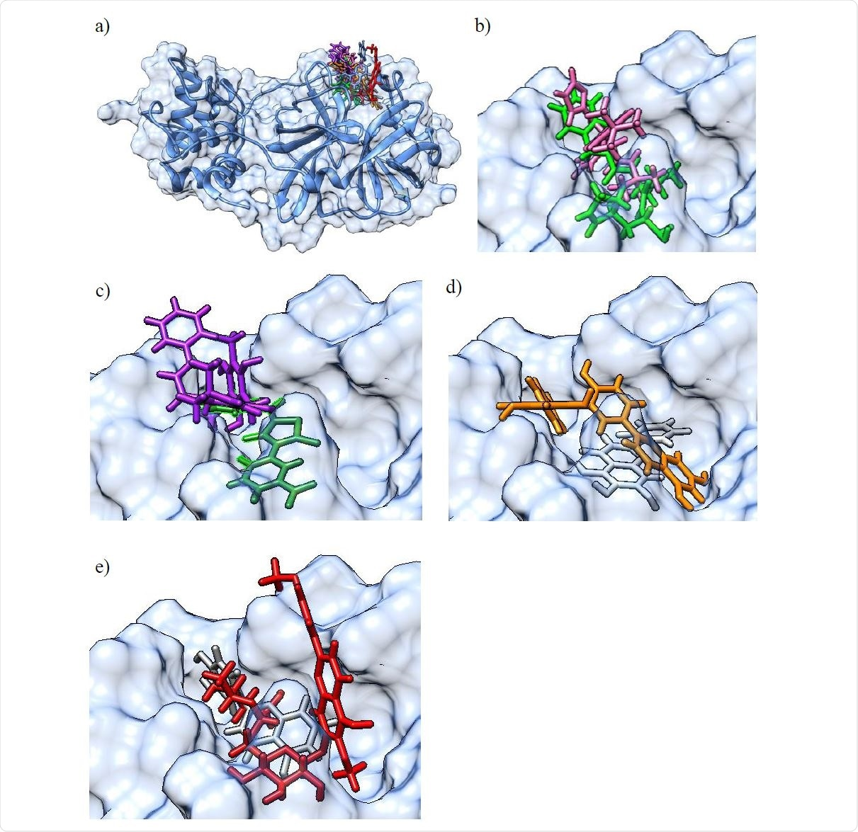 a) Molecular surface representation of the 3CLpro protein with an overlay of all confirmed actives in the binding pocket (top right) in their best scoring docking conformations (only for GC-376 / GC-373 and baicalein, crystal structures of the protein-ligand complex were available and used instead of molecular docking derived conformations). The 3CLpro secondary structure is displayed as a blue ribbon, surrounded by the solvent excluded molecular surface representation in transparent blue, and with the colored ligands shown in a stick representation. b) Larger scale representation of the overlaid pair of ligands with the lowest IC50 values: GC-376 (light green) and M-8524 (pink) in the 3CLpro binding pocket (top right part of figure 3 a); c) overlaid pair of ligands rottlerin (purple) and M-1805 (dark green); d) overlaid pair of ligands amentoflavone (orange) and baicalein (light gray); e) overlaid pair of ligands luteolin (dark gray) and pectolinarin (red).