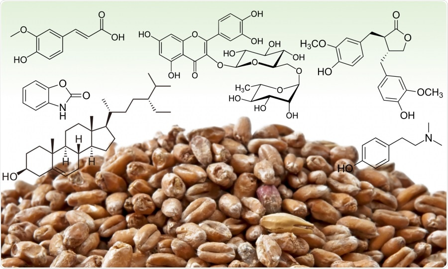 Side-stream products of malting could be used as human nutrition, indicates study