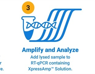 Promega launches XpressAmp™ Direct Amplification Reagents