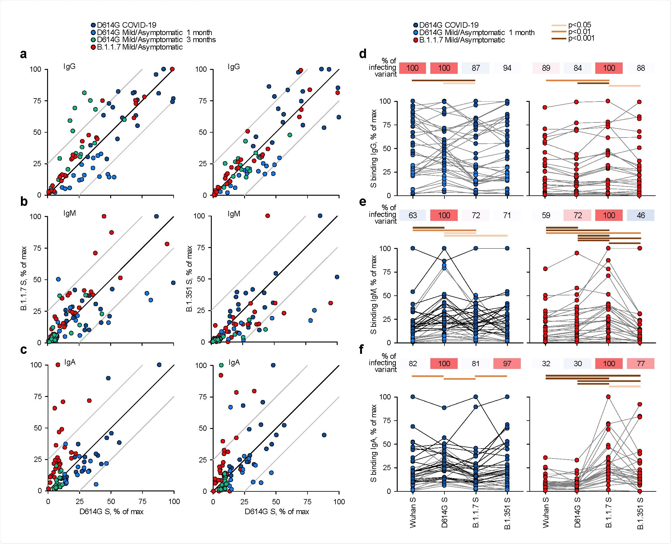 Recognition of distinct SARS‐CoV‐2 spike glycoproteins by antibodies in D614G and B.1.1.7  sera. a‐c, Correlation of IgG (a), IgM (b) and IgA (c) antibody levels to D614G and B.1.1.7 or B.1.351  spikes in the indicated groups of donors infected either with the D614G or B.1.1.7 strains. Each symbol  represents an individual sample and levels are expressed as a percentage of the positive control. Black  lines denote complete correlation and grey lines a 25% change in either direction. d‐f, Comparison of  IgG (d), IgM (e) and IgA (f) antibody levels to the indicated spikes in groups of donors acutely infected  either with the D614G or B.1.1.7 strains. Connected symbols represents individual donors. Numbers  above the plots denote the average binding to each spike, expressed as a percentage of binding to the  infecting spike.