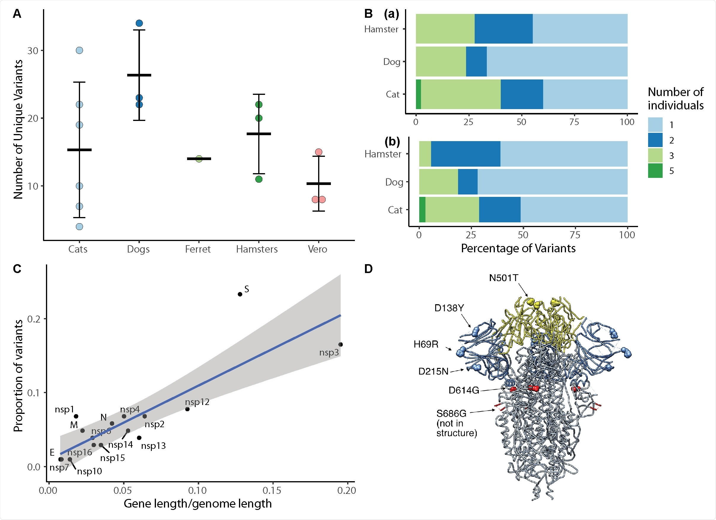 SARS-CoV-2 viral evolution differs across species, gene regions, and individuals. (A) Each point indicates the number of unique variants detected at ≥ 3% frequency in SARS-CoV-2 genomes recovered from individual animals. There is no significant difference in the number of unique variants detected in different species (ANOVA,