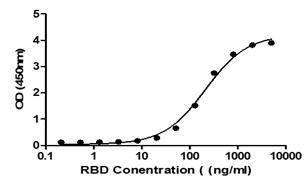 2019-nCoV Spike Protein RBD (K417N, E484K, N501Y) Catalog No: C19SD-G232H