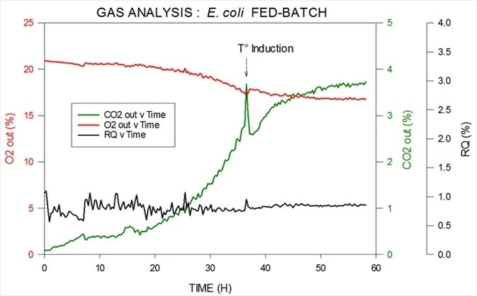 Off-gas and RQ data generated by MS from E. coli fed-batch fermentation.