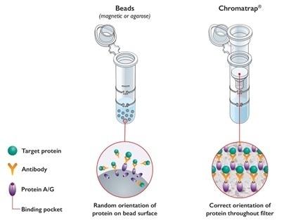 Chromatrap® Innovative Bead-free Technology