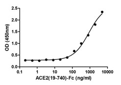 Binding of 2019-nCoV spike protein (D614G) (C19S1-G231H) to human ACE2(19-740) protein (A51C2-G341F) was determined by ELISA.