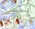 Cellular maps capture COVID-19 pathogenesis in detail