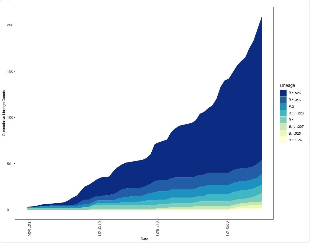 Relative frequency of SARS-CoV-2 lineages with E484K mutations in New York State. The number of SARS CoV-2 genomes assigned to lineages containing E484K as a function of time. The lineages included contained at least one genome with an E484K mutation in the New York State dataset.