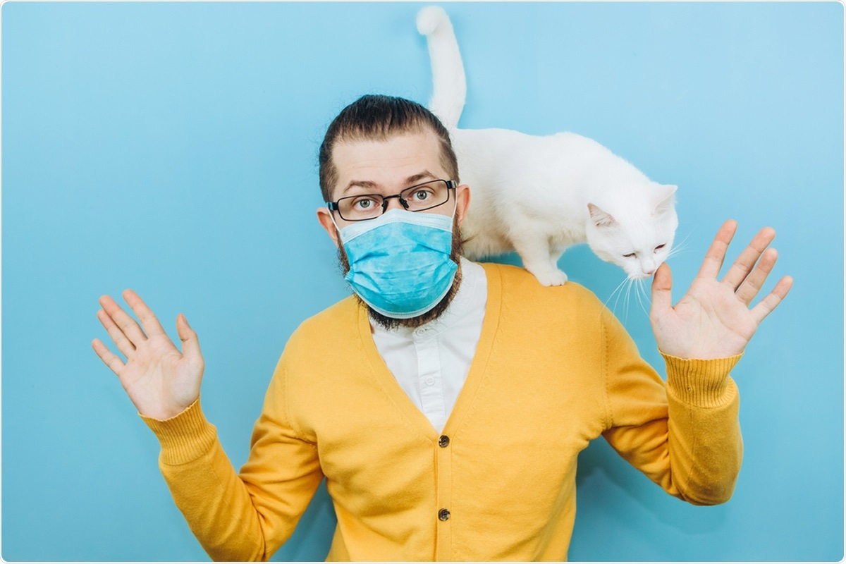 Study: New detection of SARS-CoV-2 in two cats height months after COVID-19 outbreak appearance in France. Image Credit: StaniG / Shutterstock