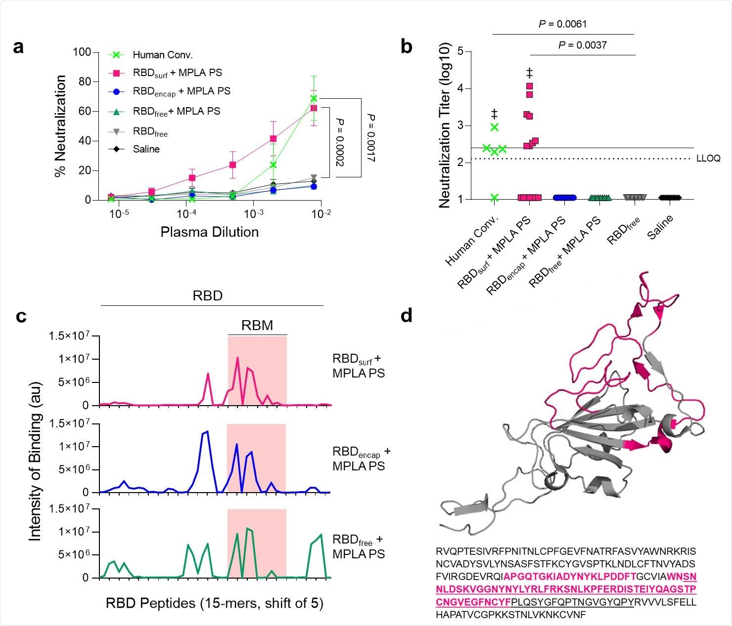 A new polymersome-based SARS-CoV-2 nanovaccine elicits robust immunity – News-Medical.Net