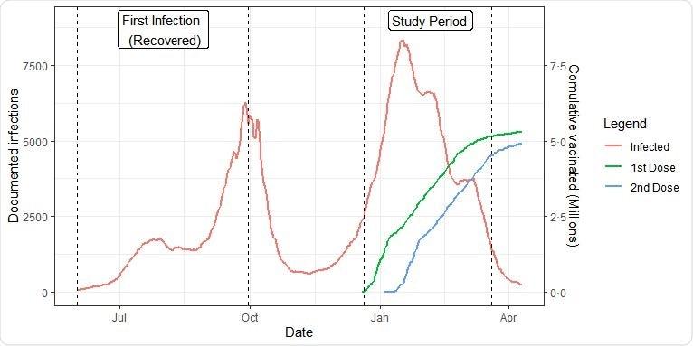 Dinámica de la población. Nuevas infecciones documentadas y personas vacunadas acumulativas por la fecha. El período del estudio y el período de la infección de las cohortes recuperadas son marcados por las líneas verticales.