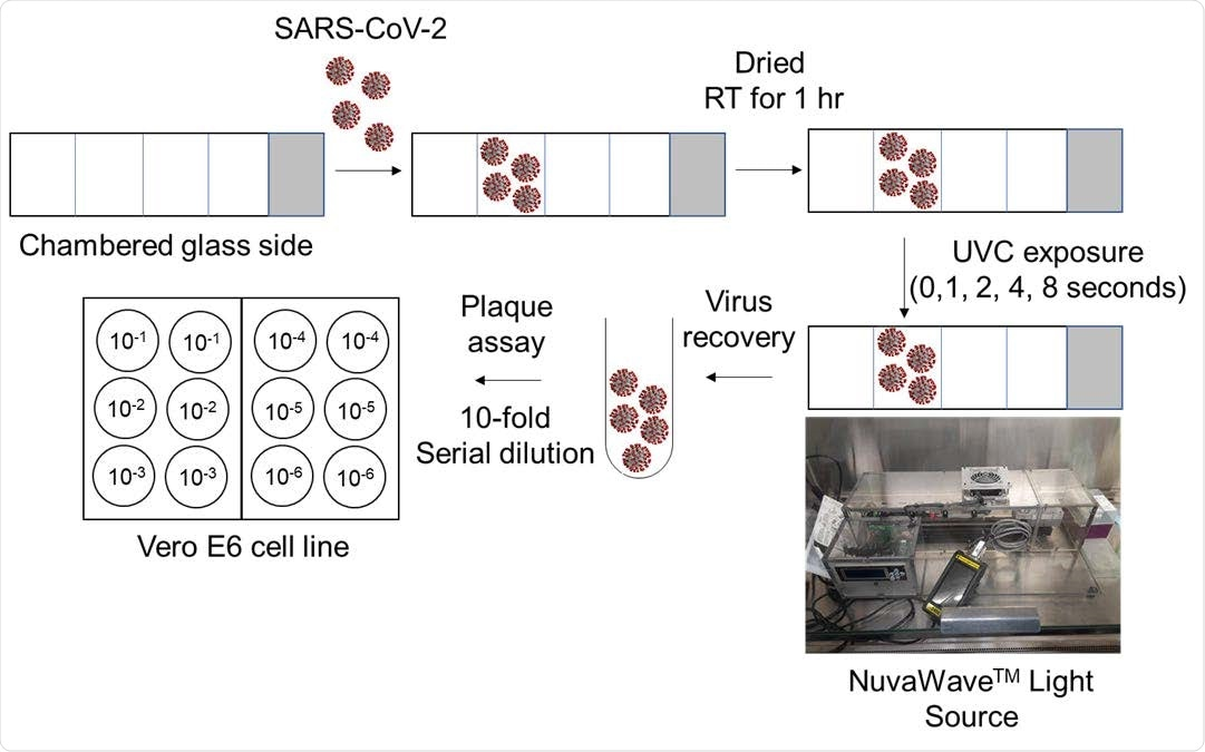 Representación esquemática del flujo de trabajo.  Se colocó SARS-CoV-2 en el portaobjetos de vidrio con cámara, se secó durante 1 hora a temperatura ambiente y luego se expuso a radiación de luz UVC utilizando el dispositivo NuvaWave durante 1, 2, 4 y 8 segundos.  No se usó exposición a la luz UVC como control.  Después de la exposición a la luz UVC, se recuperó el virus, se diluyó en serie y se usó para evaluar el virus viable en células Vero E6 mediante el ensayo de placa.