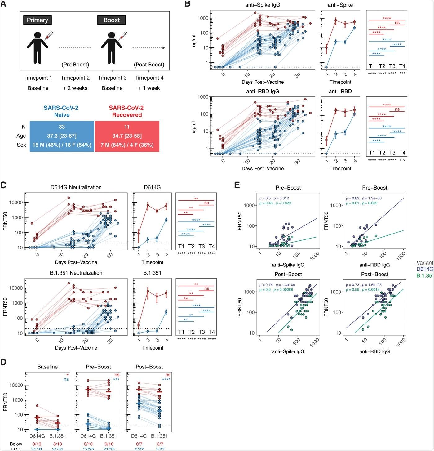 Respuestas de anticuerpos después de la vacunación con ARNm en individuos recuperados y sin tratamiento previo con SARS-CoV-2.  A) Diseño del estudio de la vacuna COVID de UPenn Immune Health.  B) Concentración de anticuerpos IgG anti-spike y anti-RBD en individuos vacunados a lo largo del tiempo.  C) Título de neutralización de reducción de foco 50% (FRNT50) de sueros inducidos por vacuna contra virus pseudotipados que expresan SARS-CoV-2 D614G (tipo salvaje) o proteína de pico variante B.1.351 (Sudáfrica).  D) Análisis emparejado de títulos de neutralización contra D614G y B.1.351 en sueros inducidos por vacuna en la línea de base (punto de tiempo 1), antes del refuerzo (punto de tiempo 2) y después del refuerzo (punto de tiempo 4).  E) Análisis bivariado de anticuerpos de unión totales anti-pico y anti-RBD con títulos de neutralización de pseudovirus frente a D614G y B.1.351.  Las asociaciones entre los niveles totales de anticuerpos y la capacidad de neutralización se calcularon usando la correlación de rango de Spearman y se muestran con líneas de tendencia lineales.  Las líneas de puntos indican el límite de detección (LOD) del ensayo.  Las estadísticas se calcularon utilizando la prueba de Wilcoxon no emparejada (comparaciones entre puntos de tiempo y comparaciones entre ingenuos y recuperados) o la prueba de Wilcoxon emparejada (comparaciones entre D614G y B.1.351) con corrección de Holm para comparaciones múltiples.  Los valores azul y rojo indican comparaciones estadísticas dentro de los grupos no tratados o recuperados.  Los valores negros indican comparaciones estadísticas entre grupos no tratados o recuperados.