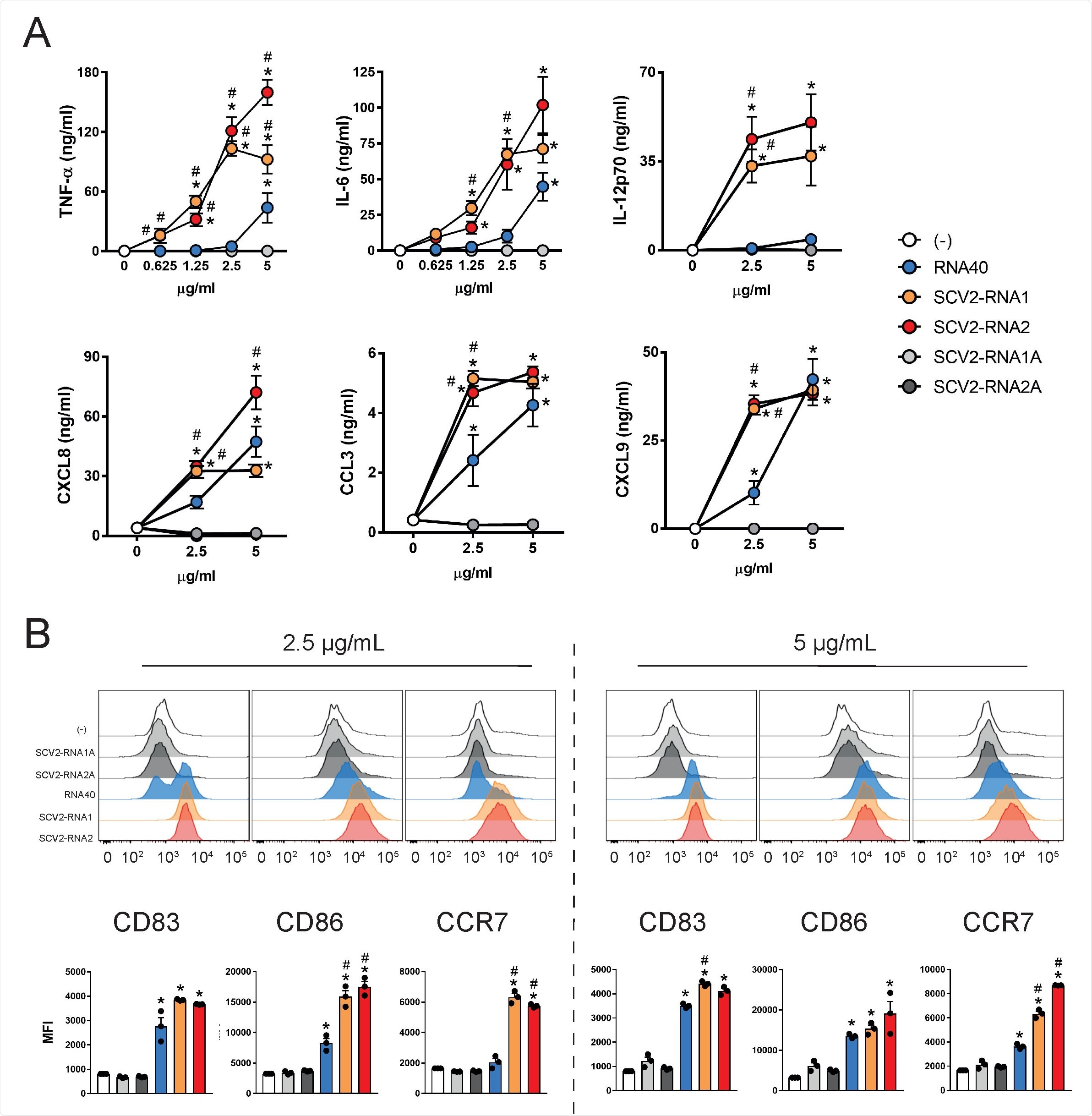 SARS-CoV-2-associated ssRNAs trigger inflammation and immunity via toll-like receptors – News-Medical.Net