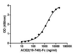 The binding of ACE2 (19-740) Protein (A51C2-G341F) to immobilized 2019-nCoV spike protein S1 (P681H) (C19S1-G232H) was determined by functional ELISA.