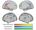 New research unravels how the brain encodes social network structure